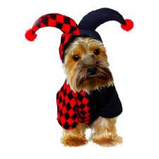 dog halloween costume online get cheap cute dog halloween costumes aliexpress com