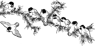 8 birds on a tree branch clipart etc