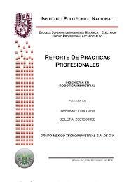 reporte de prácticas profesionales