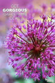 Backyard Flower Garden Ideas Gardening