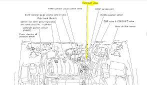 1997 nissan maxima wiring diagram gooddy org