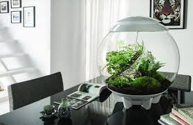 10 amazing terrariums the cult symbol of a modern house amuse