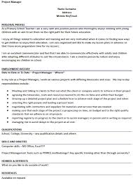 profile resume example resume free resume samples cool profile in
