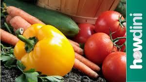 organic gardening how to grow an organic vegetable garden youtube