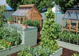 pretty shed beautiful vegetable garden designs stunning designing a ve able