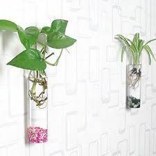 Wall Mounted Glass Flower Vases Glass Flower Vases Ebay