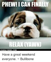Pics Meme Com - phew i can finally relax yawn puppy meme com have a great weekend