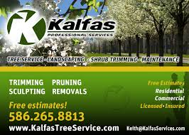 Fall Cleanup Landscaping by Uncategorized Kalfas Tree Service Page 2