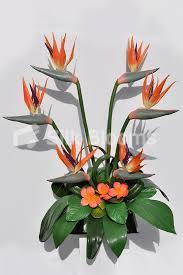 shop in bloom orange birds of paradise orchid table flower display