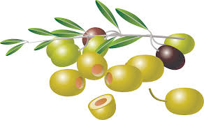 Clipart Olives Clipart Collection Olives On A Leafy Twig