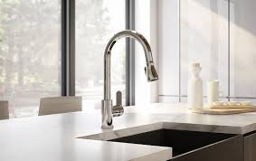 identity collection single handle pull down kitchen faucets