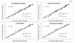 model development to predict phenological scale of table grapes
