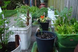 Container Vegetable Gardening Ideas 10 Small Vegetable Garden Ideas A Green