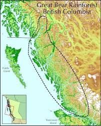 Map Of The World Bc by The Last Remaining Temperate Rainforest In The World Is Yours To