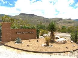 beautiful desert landscaping invisibleinkradio home decor