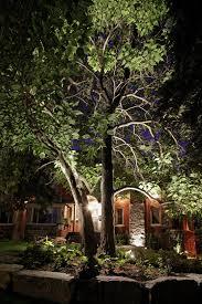 Landscape Lighting Trees Landscape Lighting Fairfield County Outdoor Lighting