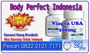 jual obat kuat pria viagra 100 mg pfizer usa pil biru