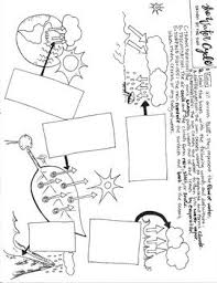 15 best biology images on pinterest biology coloring sheets and