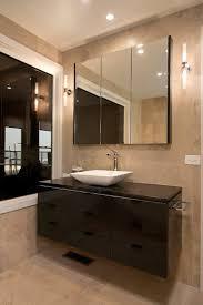 Bathroom Cabinet Ideas Bathroom Bathroom Furniture Adorable Vanity Ideas For Plus