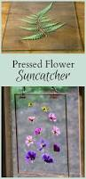 How To Make A Moss Wall by Best 25 Pressed Flower Art Ideas Only On Pinterest Pressing
