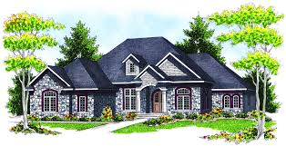 wondrous design 15 french country single level house plans ranch
