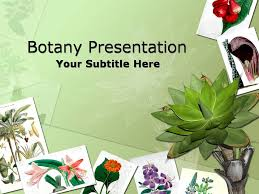 botany nature flower templates for powerpoint presentations