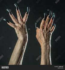 old female hands with long nails stock photo u0026 stock images bigstock