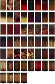 hair color chart the wigs and hair extensions colour guide