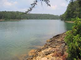 Alabama lakes images The alabama al waterfront home and property guide jpg