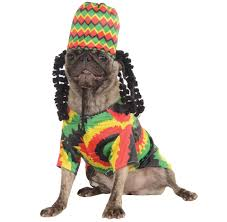 Halloween Costumes Small Dogs Rasta Dog Costume Small