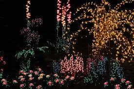 2016 garden d u0027lights free nights bellevue botanical garden info