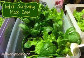 Indoor Gardening by Indoor Gardening Made Easy Small Scale Gardening