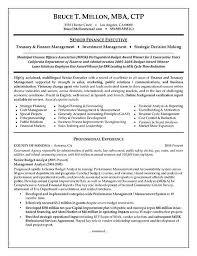 executive resume pdf sle budget analyst resume financial manager resume exle