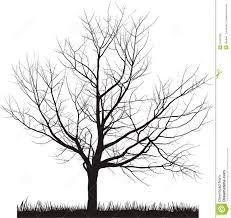 vector illustration of cherry tree in winter stock vector image