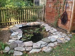 backyard pond with aquatic plants and fish diy