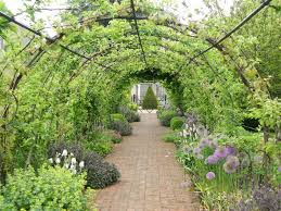 the kitchen garden gardening ideas