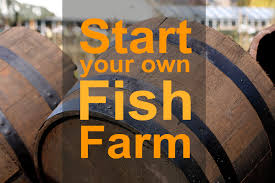 turn your home into a home based fish farm nourish the planet