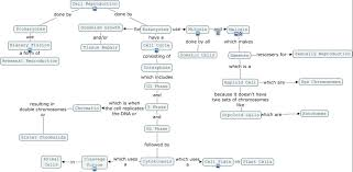 Cell Reproduction Concept Map Answers Cell Reproduction Concept Map