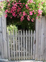 flower gardening 101 the consummate gardener florida gardening and more april 2016