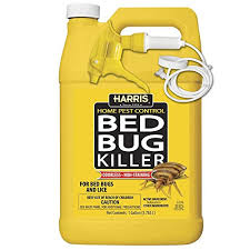 Rubbing Alcohol Kills Bed Bugs Does Alcohol Kill Bed Bugs How Alcohol Really Affects Bed Bugs