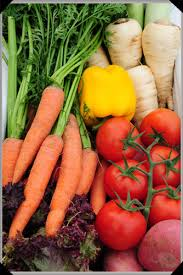 vegetable garden starting your business