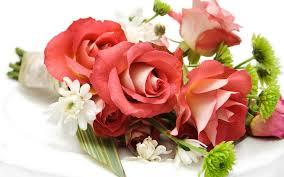 beautiful flowers bunch hd wallpapers rocks