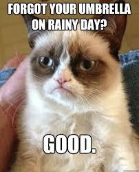 Rainy Day Meme - forgot your umbrella on rainy day good grumpy cat quickmeme