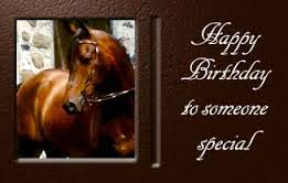 Horse Birthday Meme - meme template search imgflip