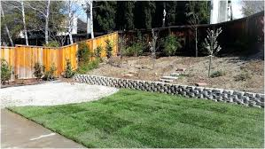 backyard ideas for dogs pet friendly landscape ideas impressive now everyone has a private