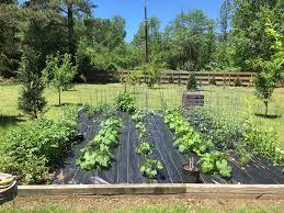 the garden gods cerakko farm