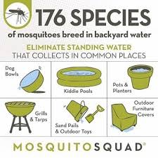 Mosquito Backyard Mosquito Control Bluffton Sc