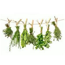 les herbes de cuisine greta garbure