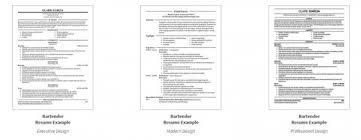 Example Bartender Resume by Examples Of Bartender Resumes Professional Resume Layout Examples