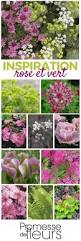 Ambiance Et Jardin 571 Best Maison Jardinage Images On Pinterest Gardening